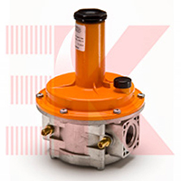 Регулятор давления газа Tecnogas FRG\2MC